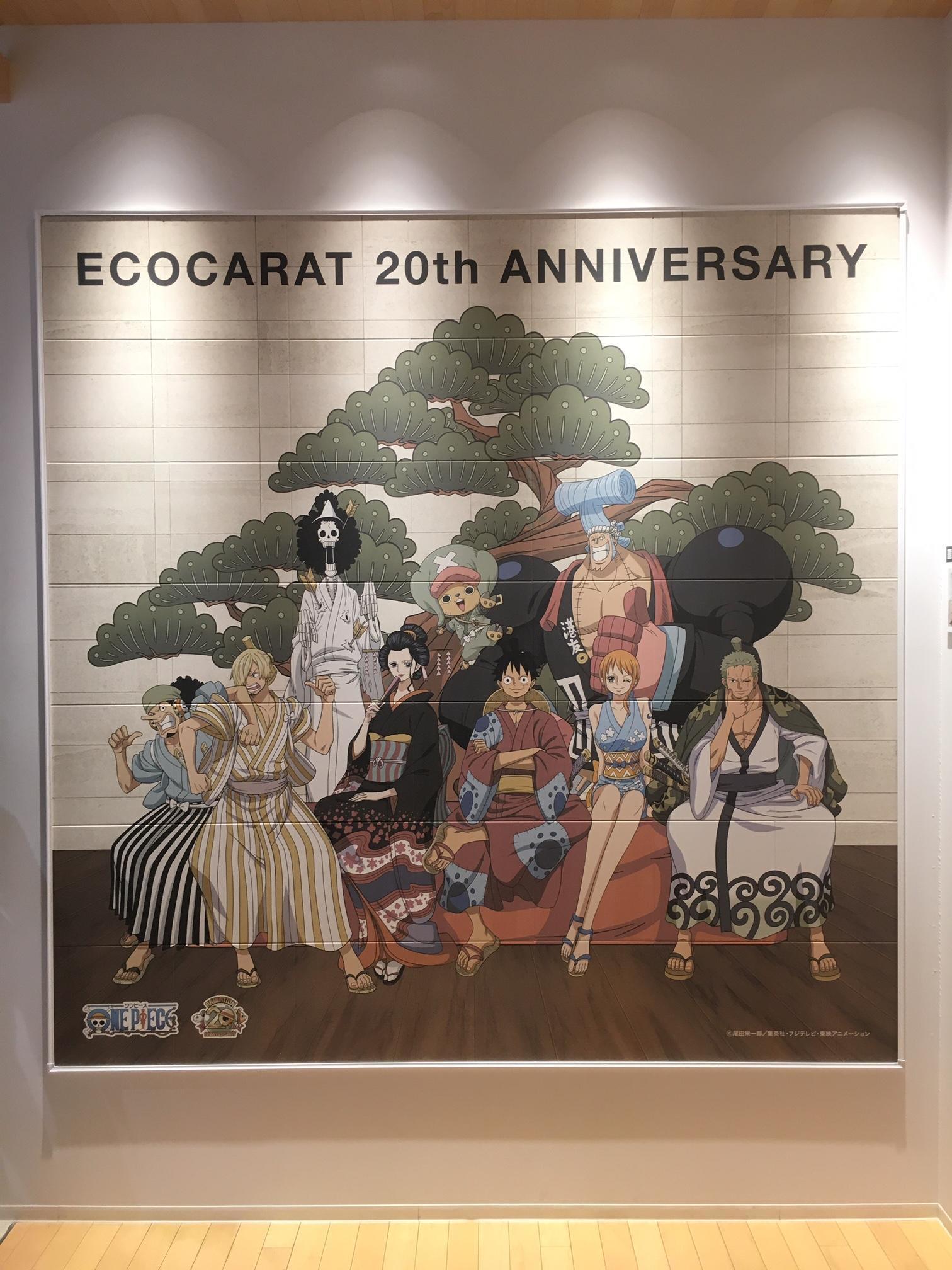 エコカラット.JPG