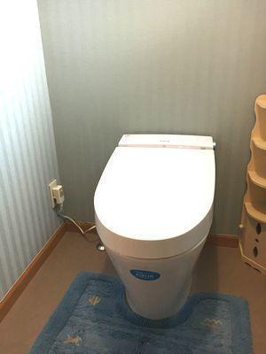 クロスも替えて居心地のよいトイレになりました。