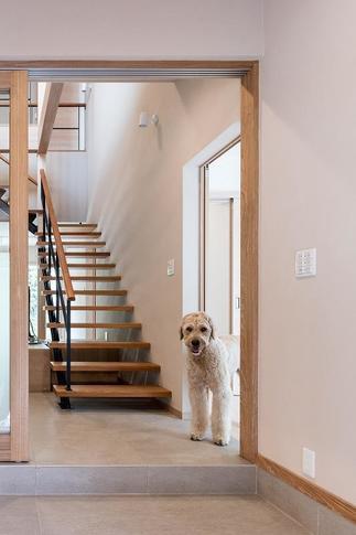 犬と一緒に生活する家