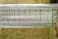 NEC_0457-1.JPG