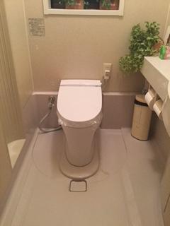 静かだけど豊かなトイレ