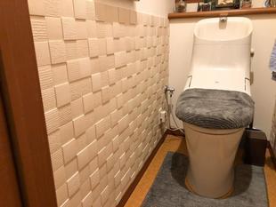 エコカラットで素敵なトイレ空間へ!