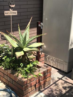 散水栓を立水栓に変更