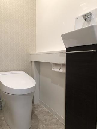サティスS リトイレ 手洗いカウンター